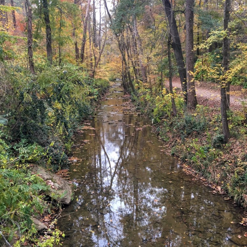 What's open on Christmas Day in Birmingham? Many local parks, including the Jemison Trail in Mountain Brook