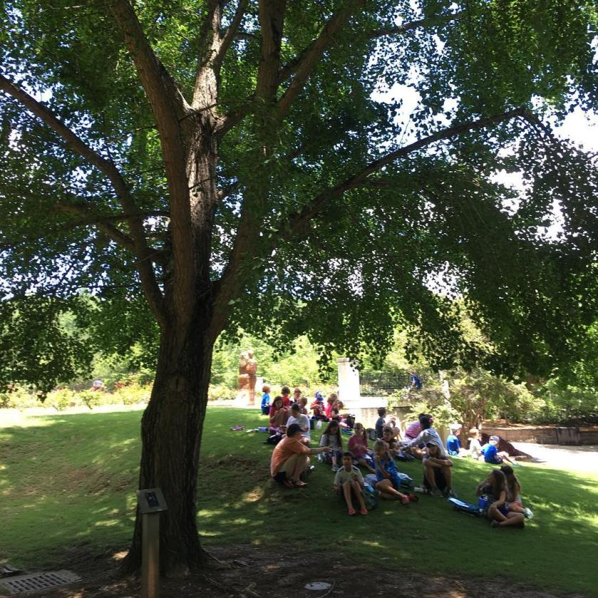 A group of people sit under a ginkgo tree at Brimingham Botanical Gardens in Alabama.