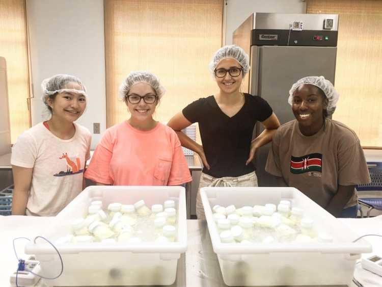 Junior League of Birmingham volunteers provided hundreds of hours of service to the Mother's Milk Bank of Alabama.