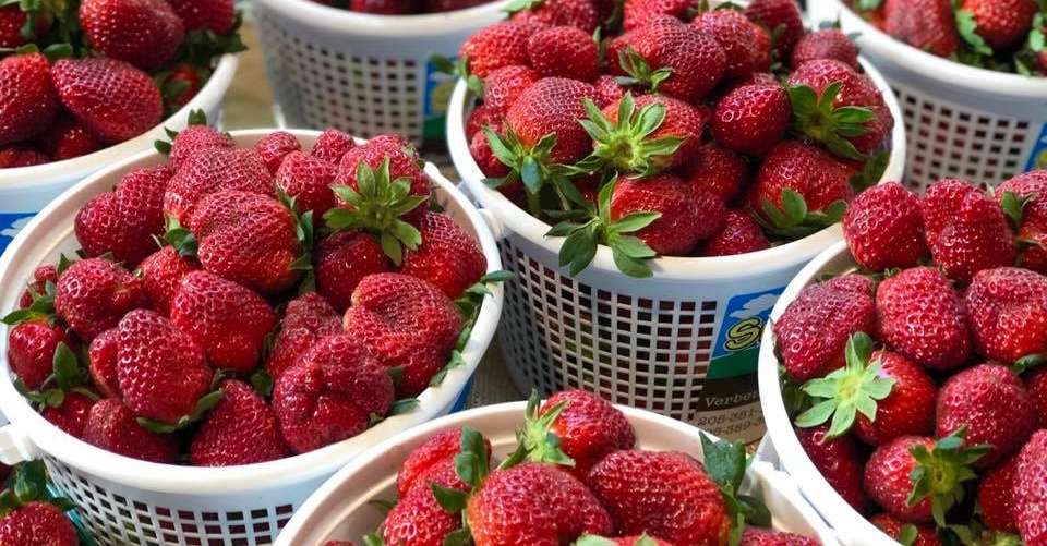 Strawberries at Market at Pepper Place 2019 in Birmingham, Alabama.