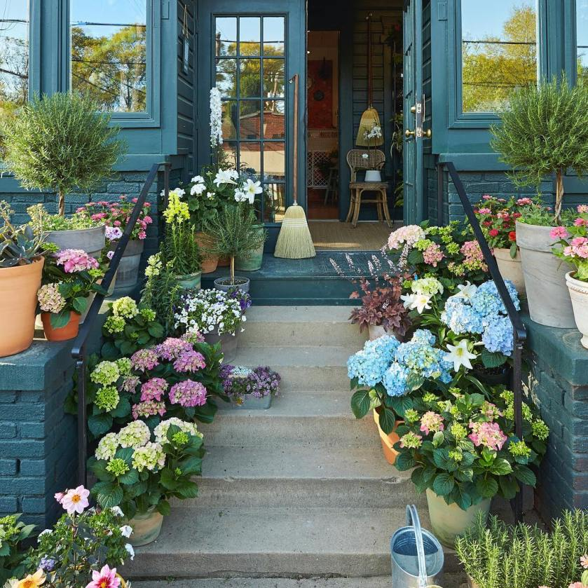Head over to Shoppe in Birmingham's Forest Park for expert advice on what plants work best in your space. The pros can help even the blackest thumb brighten their patio with an array of flowers and plants.