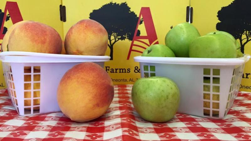 Allman Farms & Orchard is a u-pick farm near Birmingham.