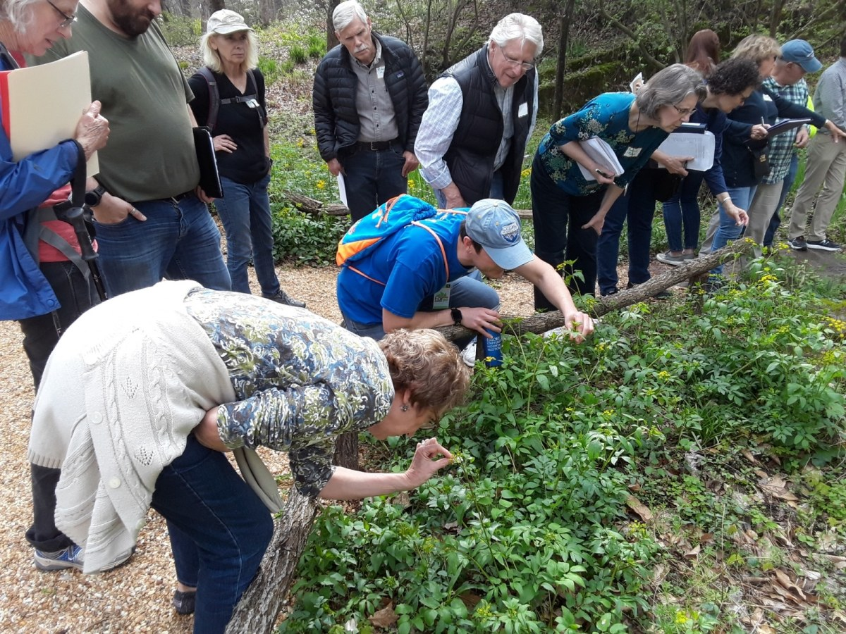 Register today for Birmingham Botanical Gardens' Native Plant Conference on May 30-June 2