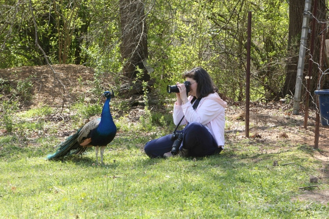 Need a fun learning activity this summer? Check out Samford's Academy of the Arts' programs, including photography