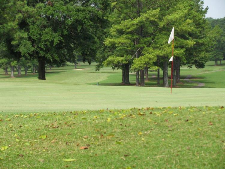 A green at Roebuck Municipal Golf Course, AL.