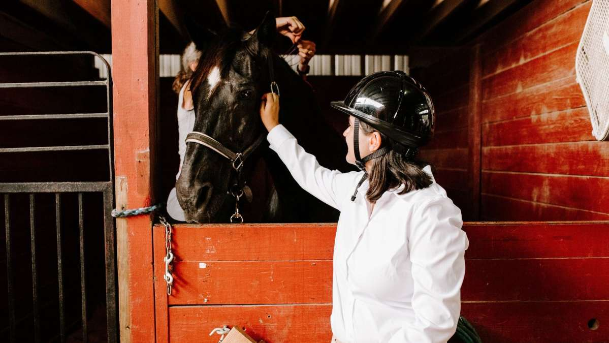 King's Stables, an equine therapy program in Chelsea, needs your help! 3 things to know + how to help them build a new barn.