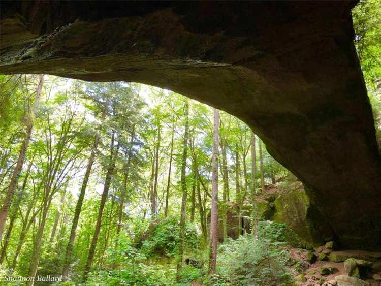 Natural rock feature Natural Bridge of Alabama