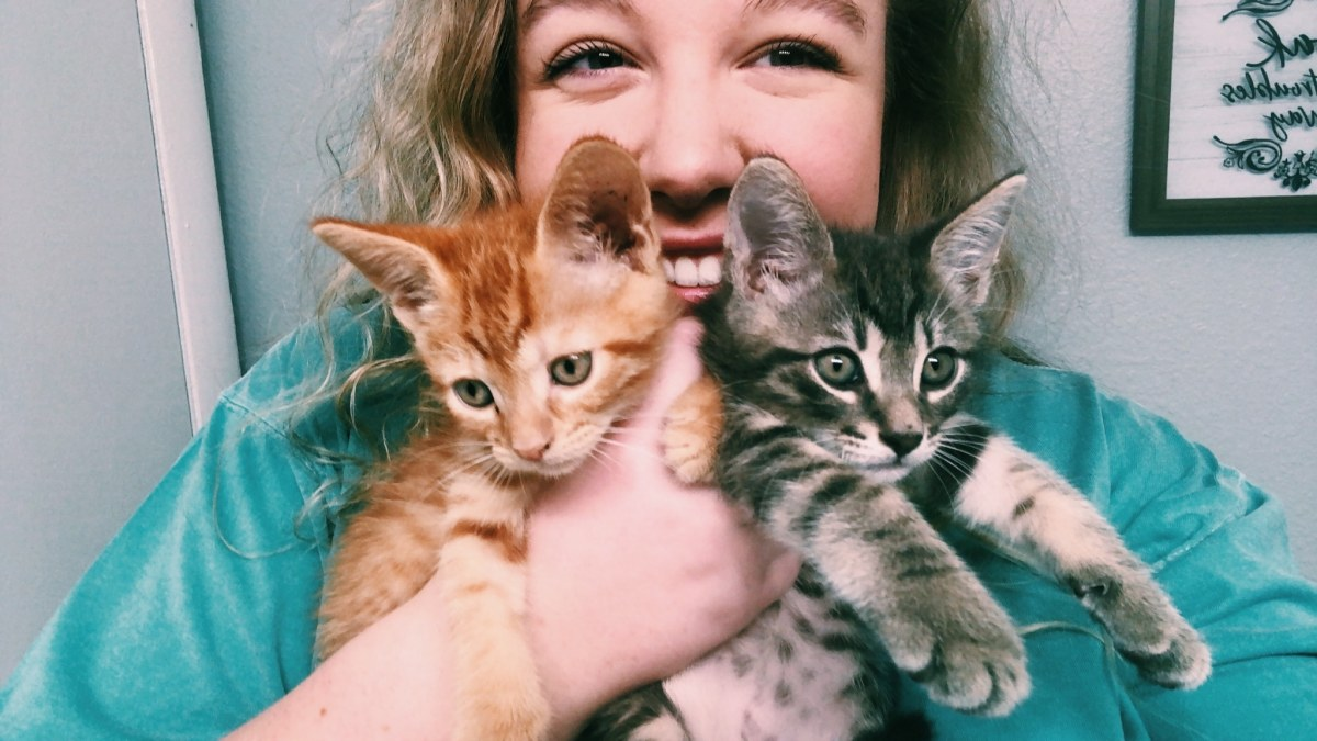 I'm a new foster mom to fur babies in Birmingham—and you can be, too!