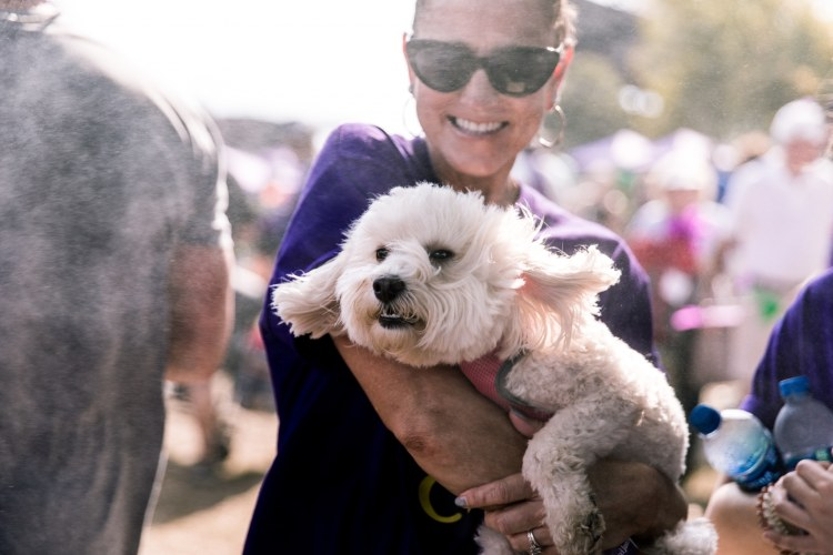 Puppy at 2019 Walk to End Alzheimer's
