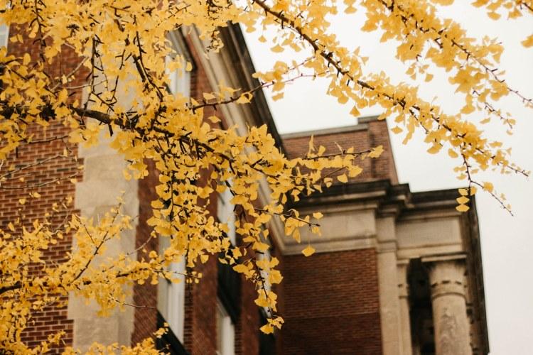 Birmingham-Southern College