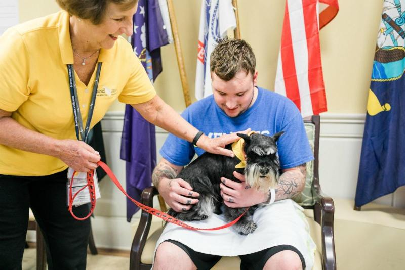 Hand in Paw supports vets