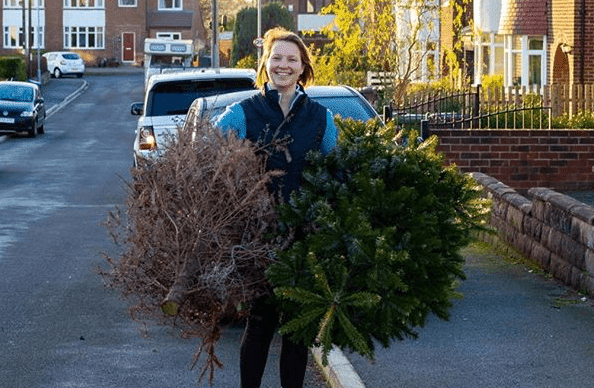 Recycle your Christmas tree, Birmingham! Here's how.