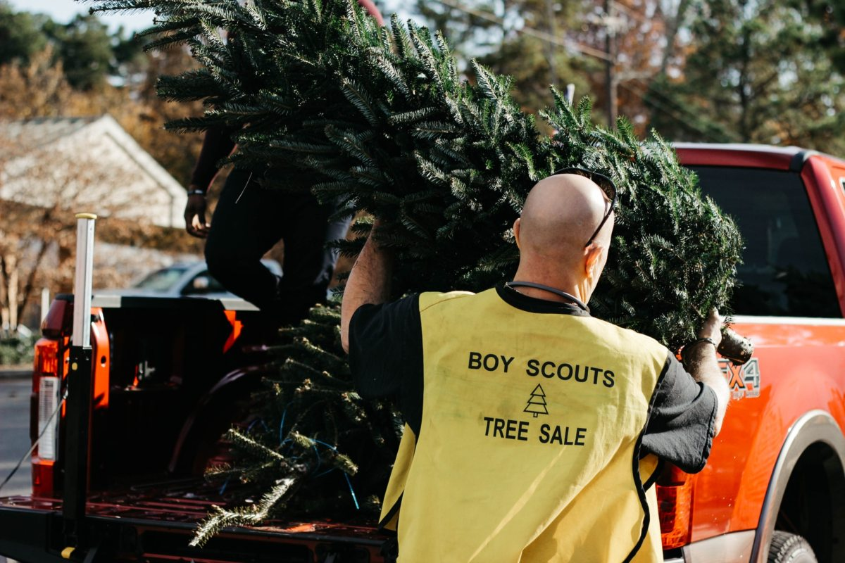 7 local spots to find your perfect Christmas tree in Birmingham