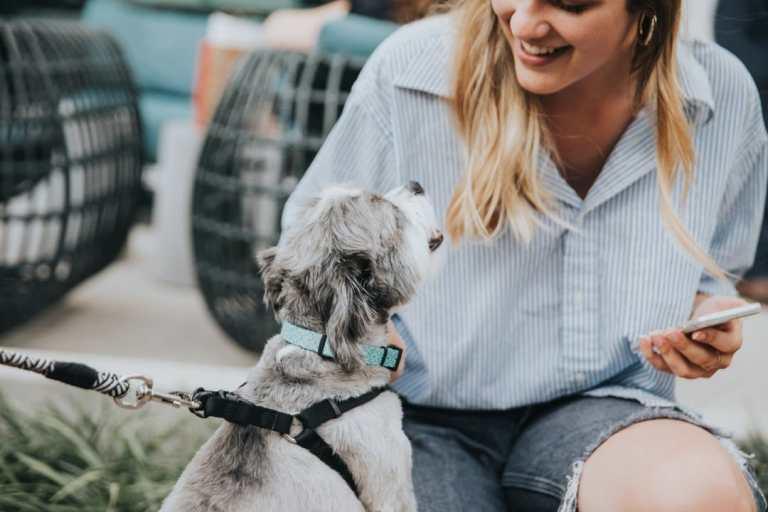 girl and dog via the pizitz
