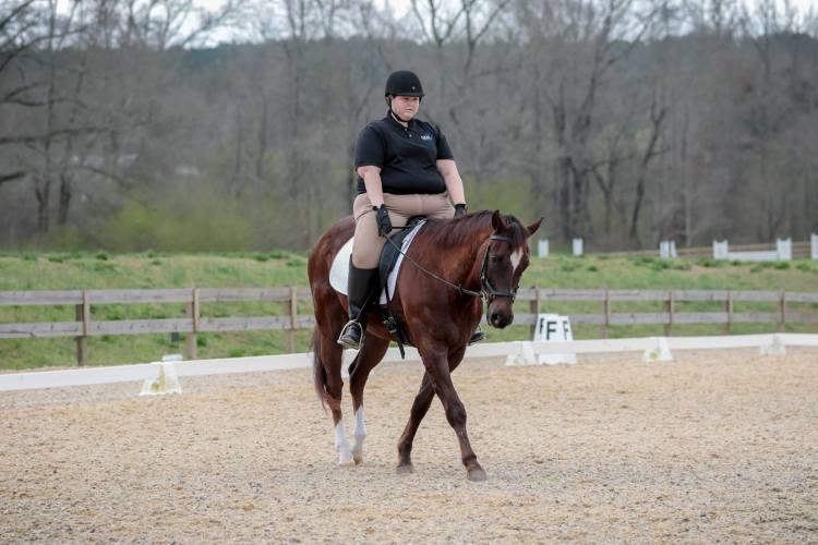 gkm equestrian horseback riding