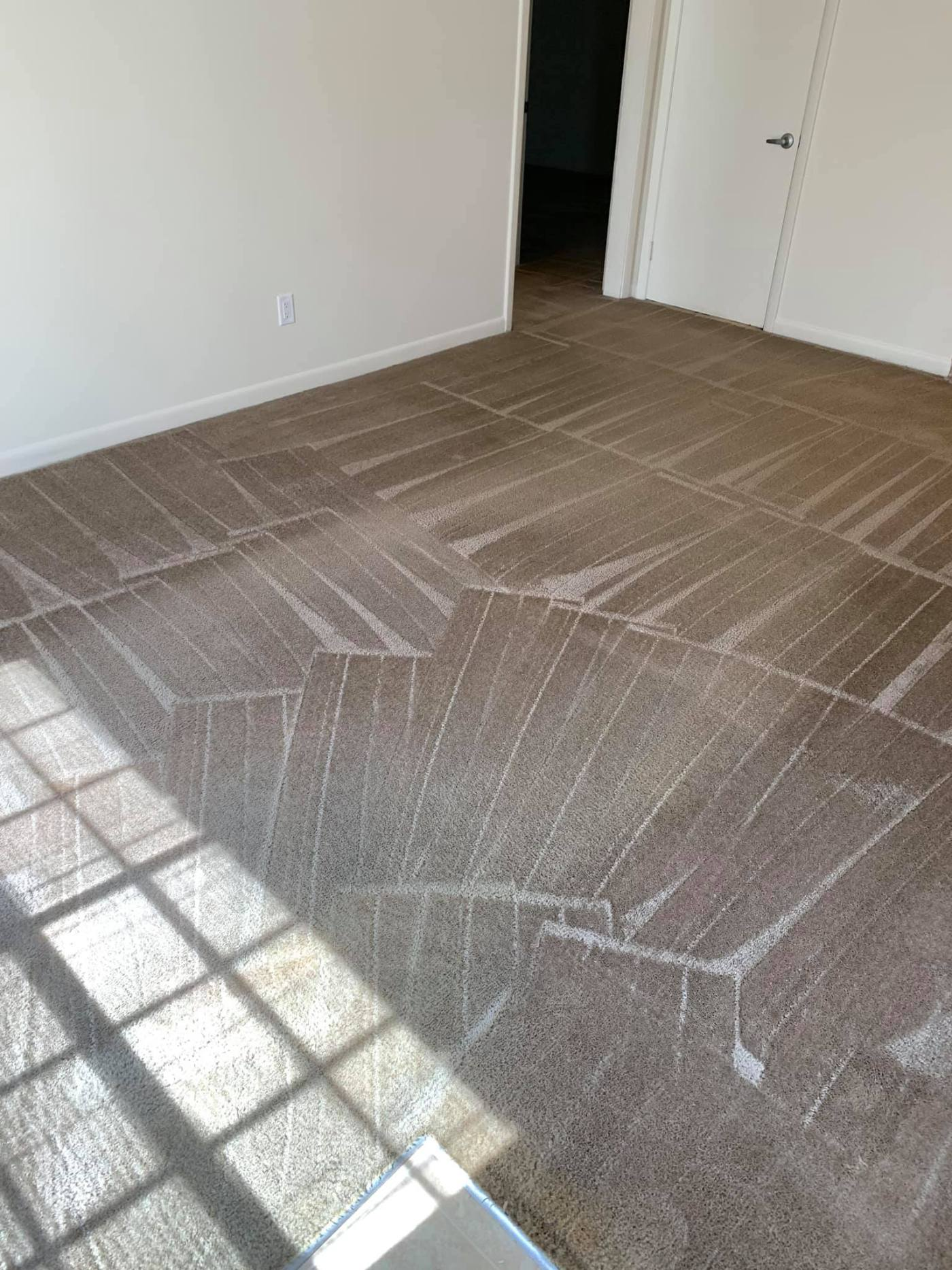 Complete Steam Carpet Cleaning