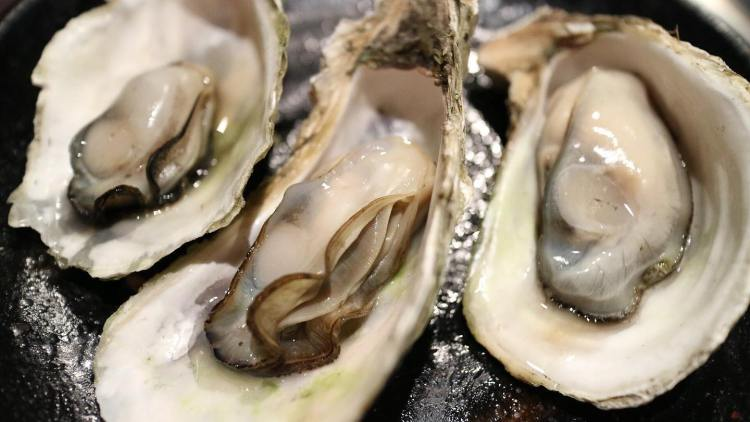 Upclose photo of oysters