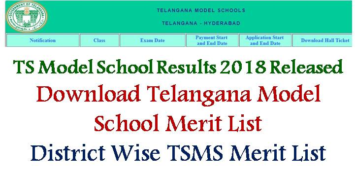 TS Model School Result 2018, TSMS Result