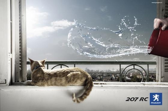 peugeotcat-1.jpg