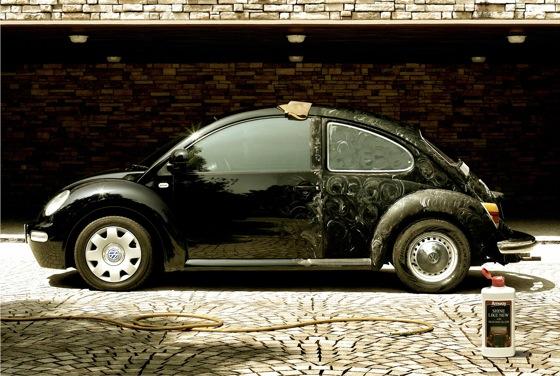 amway_beetle.jpg