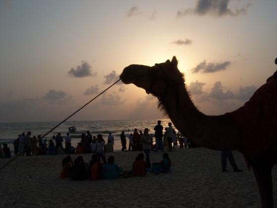 Malpe Beach.jpg