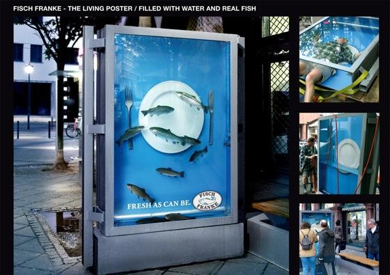 fishfranke.jpg