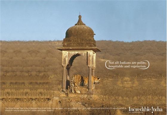002-Tiger-ad.jpg