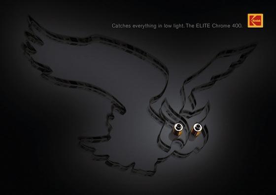 Kodak Owl.jpg