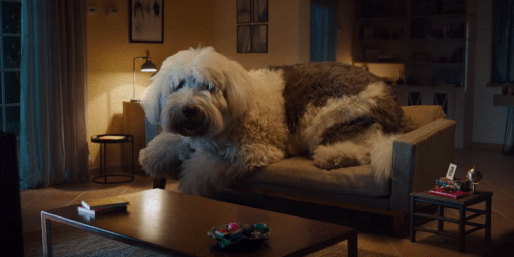Billboard which illuminates a road, a one ton dog and more: creative ads of the week