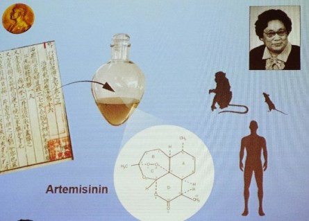 Biotic Interactions - Spiritualism vs Parasitism. Artemisinin, is found effective in reducing morbidity and mortality of Malarial Disease caused by Plasmodium Protozoan Parasite.