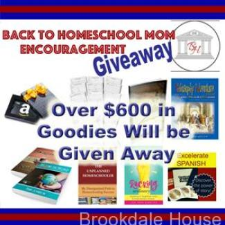 Back To School Homeschool Mom Encouragement Giveaway!! Over $600 worth of goodies up for grabs, and THREE winners.