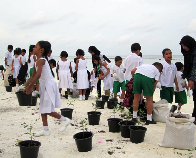 Socially Responsible Investing: Tree planting initiatives in the Maldives