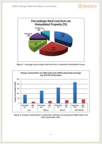 BHESCo Energy Survey 2