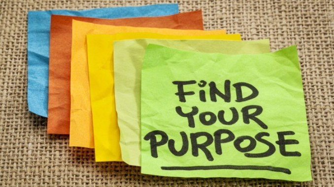 HAVE A PURPOSE, NOT JUST A JOB