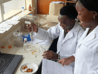 African Governments Advised to Improve Education for Industrial Demand
