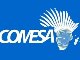 Zimbabwe Must Focus on COMESA for Exports: Competition Commission says
