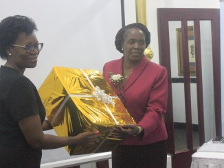 Energy Deputy Minister Official Opens SAPP Executive Committee Meeting