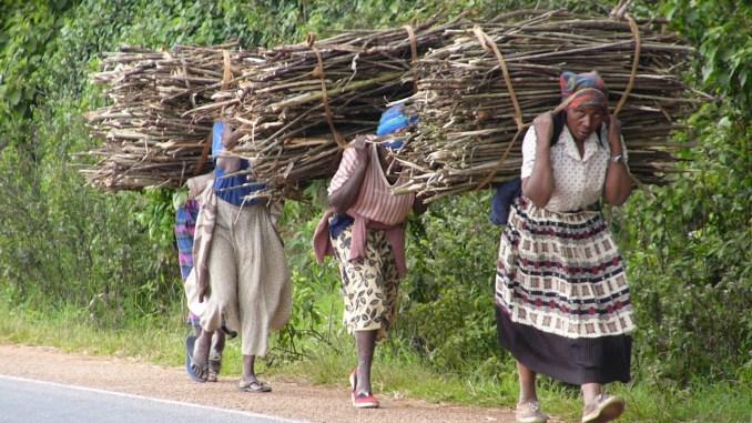 Zimbabwe's Economic Environment Worsen Gender Inequality: Human Rights Commission