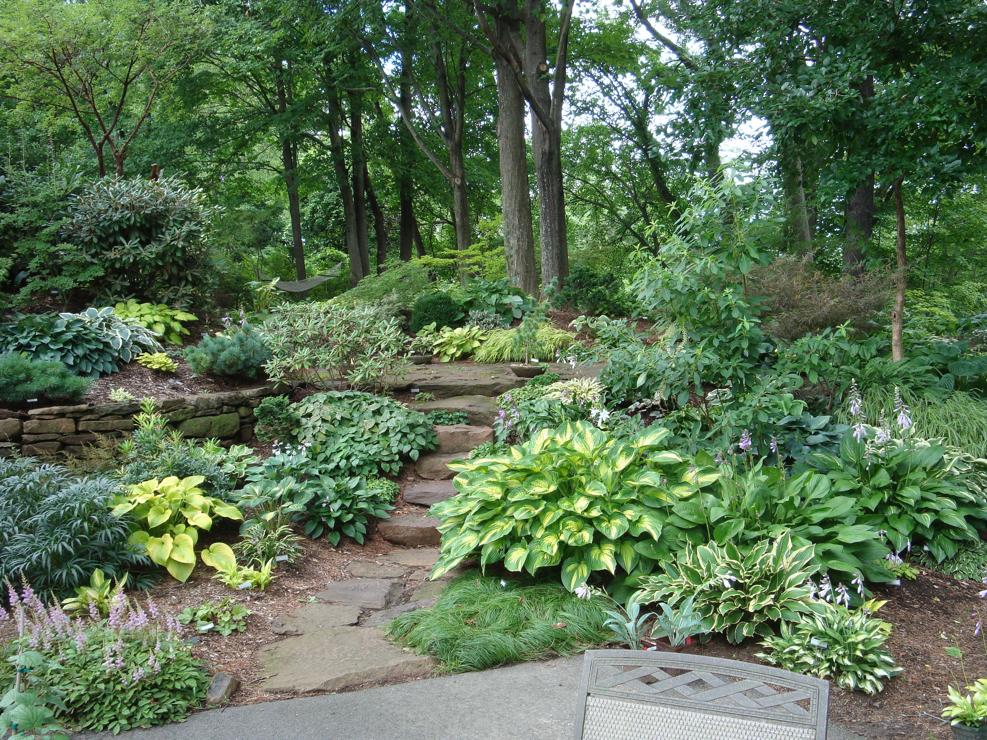 """Garden Designers Roundtable: """"Trees"""", an Important Element ... on Shady Yard Ideas id=67827"""