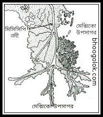 পক্ষীপদসদৃশ ব-দ্বীপ বা পাখির পায়ের মত ব-দ্বীপ (Bird-foot Delta)