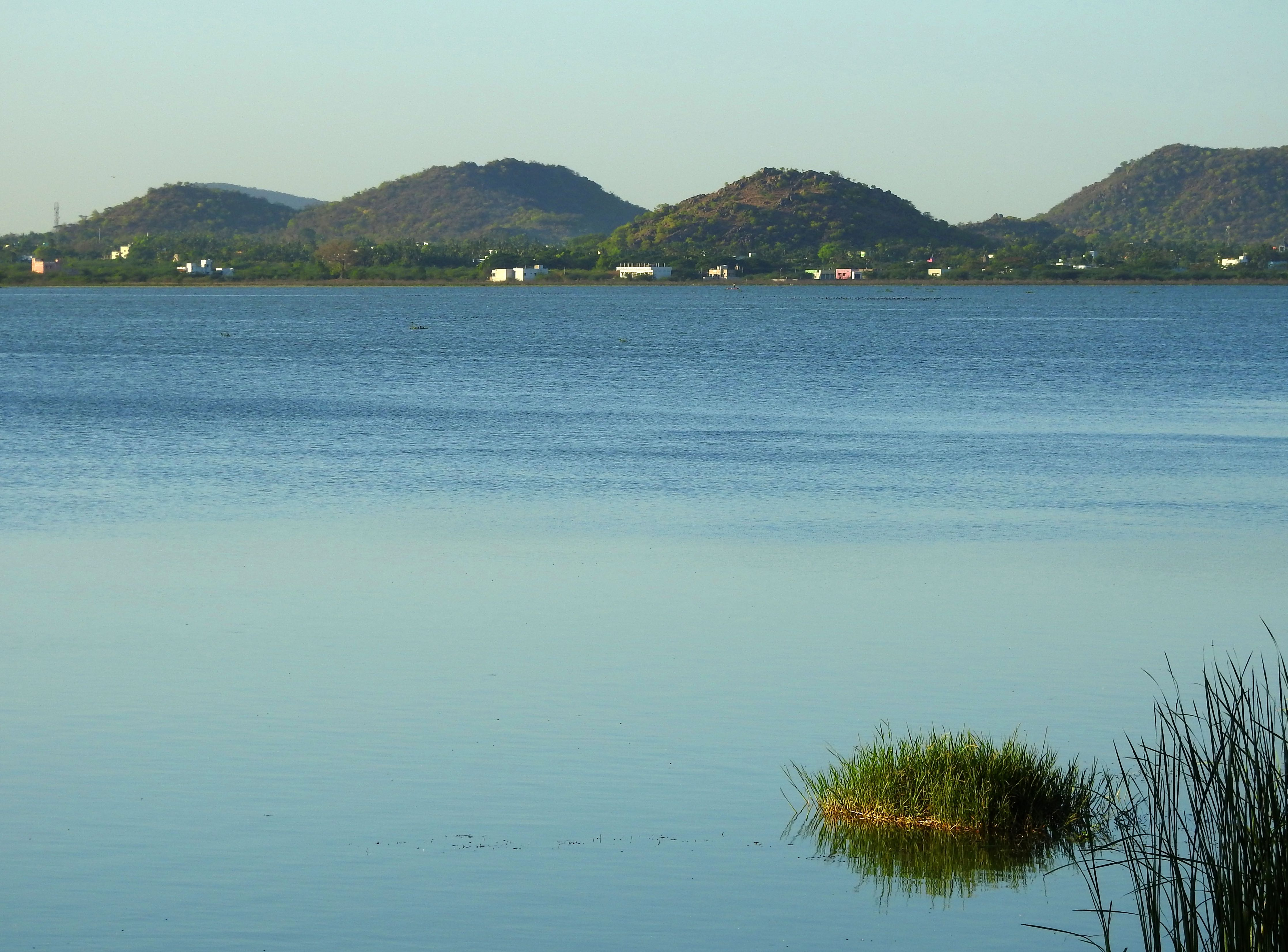 Kolavai Lake, Chengalpattu