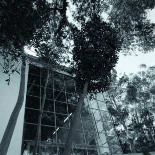 1462447690_6_Art_in_the_Forest_the_building