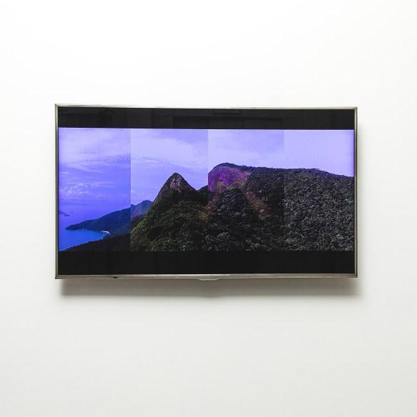 Ricardo van Steen, Mamanguá 2, 2014. Borusan Çağdaş Sanat Koleksiyonu. Fotoğraf: Özge Balkan
