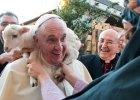 Rzecznik Watykanu: Zwierzęta nie pójdą do nieba. To nieporozumienie