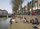 Wielki eksperyment społeczny: Utrecht zapłaci 900 euro miesięcznie wszystkim potrzebującym