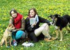 Lato to nie są wakacje od czytania! Big Book Festival jak Open'er czy Off [ROZMOWA]