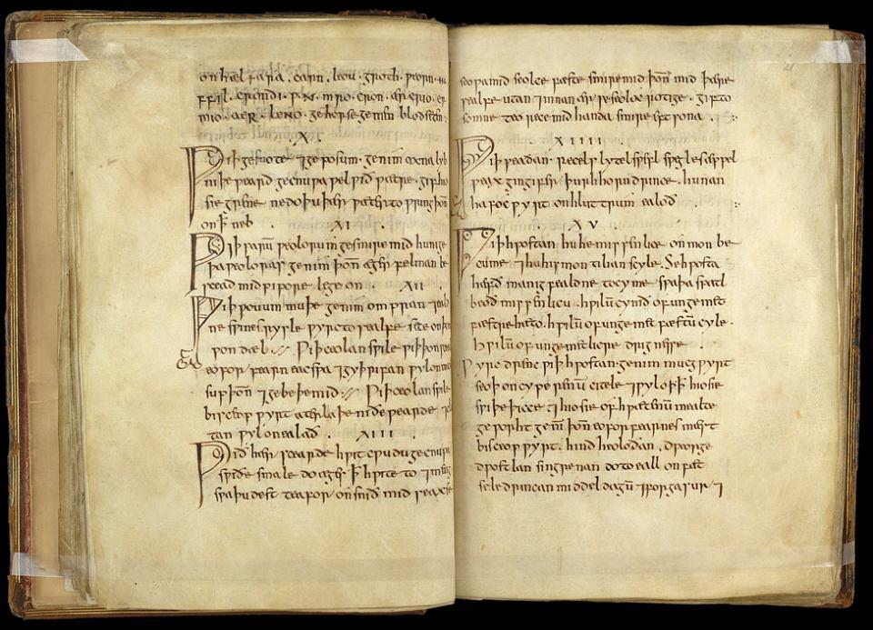 Licząca tysiąc lat księga 'Bald's Leechbook', w której znajduje się wiele recept na leki przeciw różnym infekcjom, zapaleniom czy bólom. Jej jedyna kopia przechowywana jest w Bibliotece Brytyjskiej w Londynie