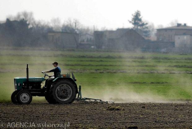 Rolnikom nie podoba się PiS-owska ustawa o ziemi. Niepokoi zwłaszcza to, że o prywatnym obrocie ziemią będzie decydować ANR