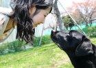 Dlaczego serce ci mięknie, kiedy twój pies patrzy ci w oczy?
