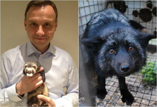 Prezydent Duda pozuje ze zwierzętami - ale nie uważa ich za priorytet